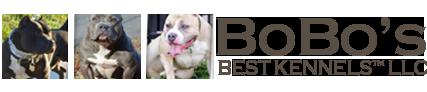 BoBo's Best Kennels LLC